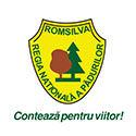 ROMSILVA-web.jpg
