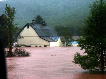 flood011 - Copy.jpg