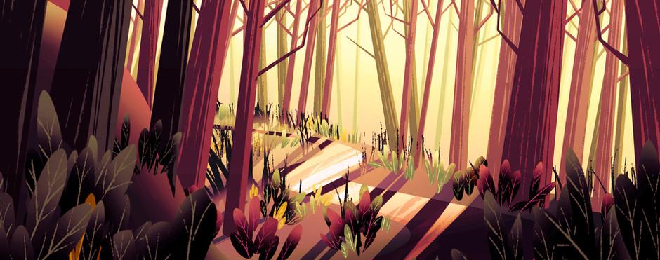 081720_BG_Forest_02.jpg