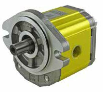 "Gear Motor Group 2, 4.2-39.6 cc, SAE A mount, 5/8""keyed shaft"
