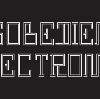 WEEK11:Disobedient Design
