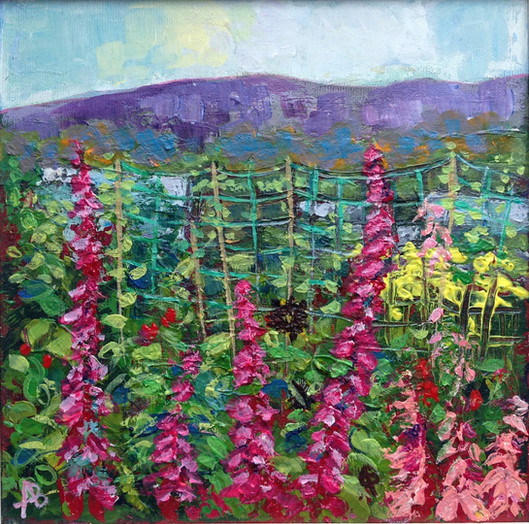 Foxgloves and Greenhouses Annadale