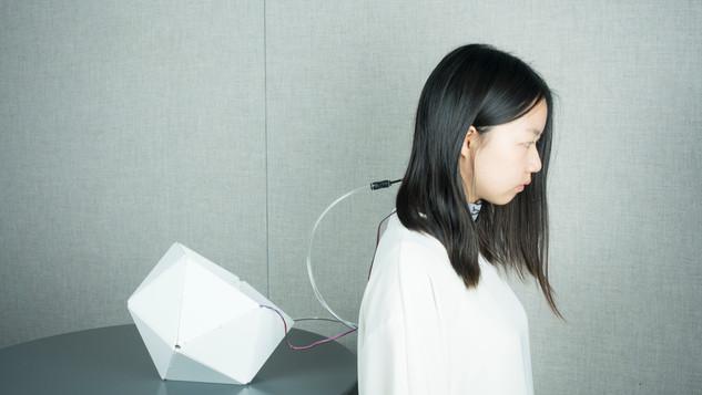 Biometric Perception Interface