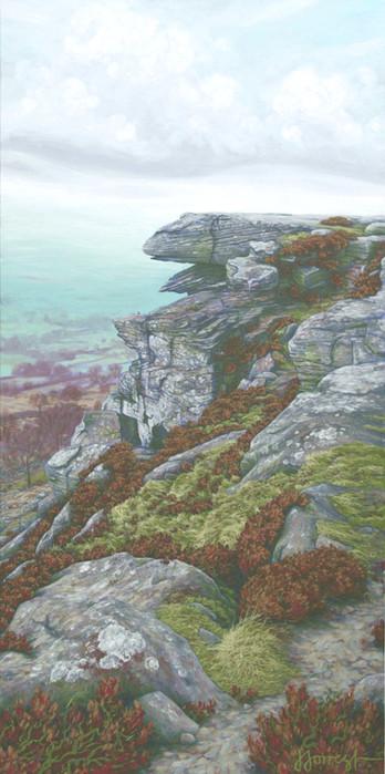 'Rock Face at Curbar'