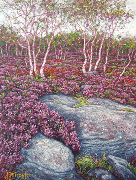 'Birches at Mother Capp'