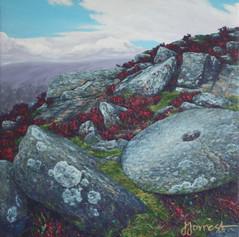 'Millstone at Curbar'