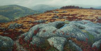 'Froggatt Rock Pools'