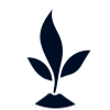 responsibility-icon-plant.png