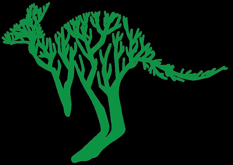 Kangaroo tree