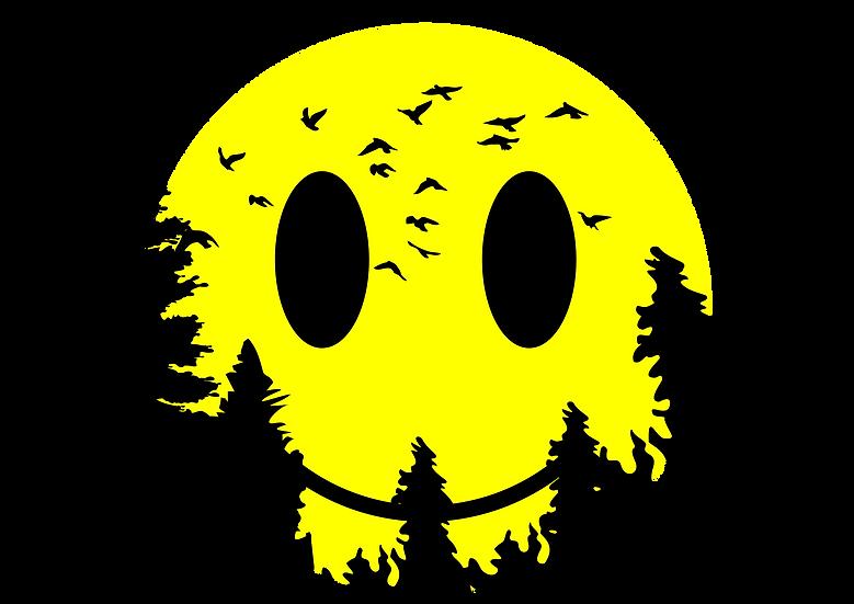 Smiley Moon