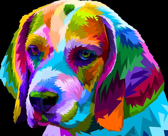 Dog 45