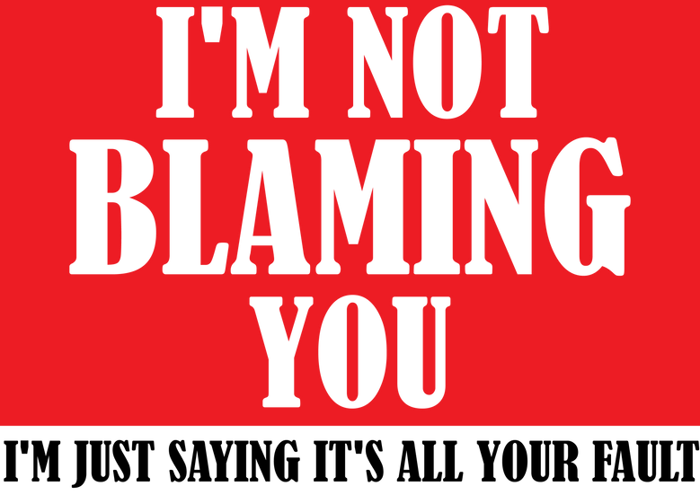 I'M NOT BLAMING YOU