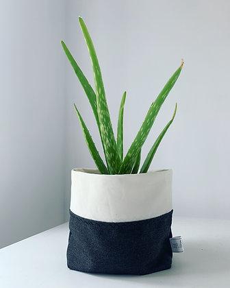 Eco Planter