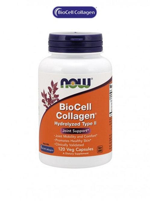 BioCell Collagen® Hydrolyzed Type II