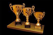 award%20winning%20copy_edited.jpg