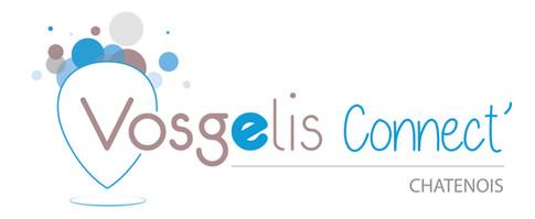 Création du logo des agences Vosgelis