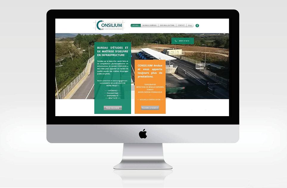 indesign site consilium.jpg
