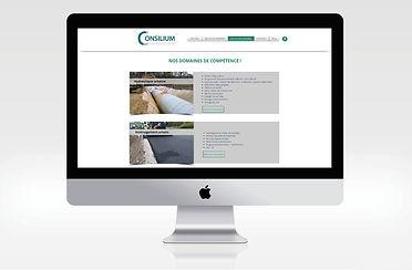 indesign site consilium.REALISATIONjpg.j