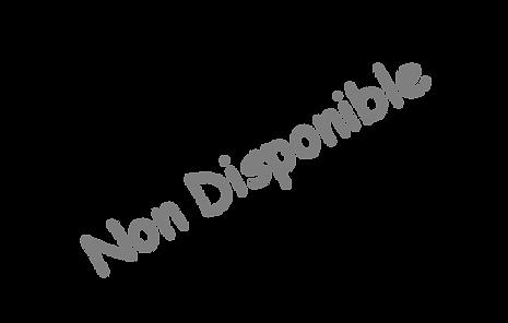 non-disponible.png