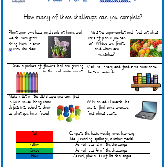 Y1/2 Home Learning Challenges