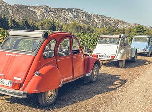 2cv en Provence.jpg
