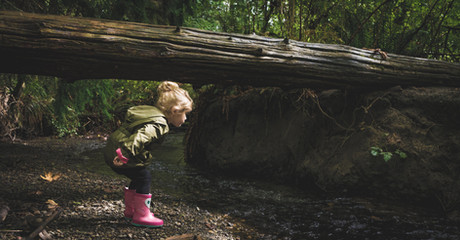 a-child-exploring-nature.jpg