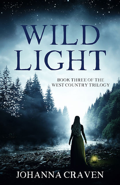 WILD LIGHT small cover.jpeg