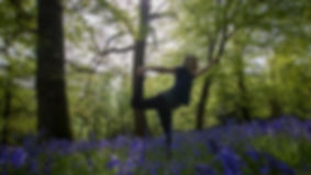 Forest retreats yoga.jpg