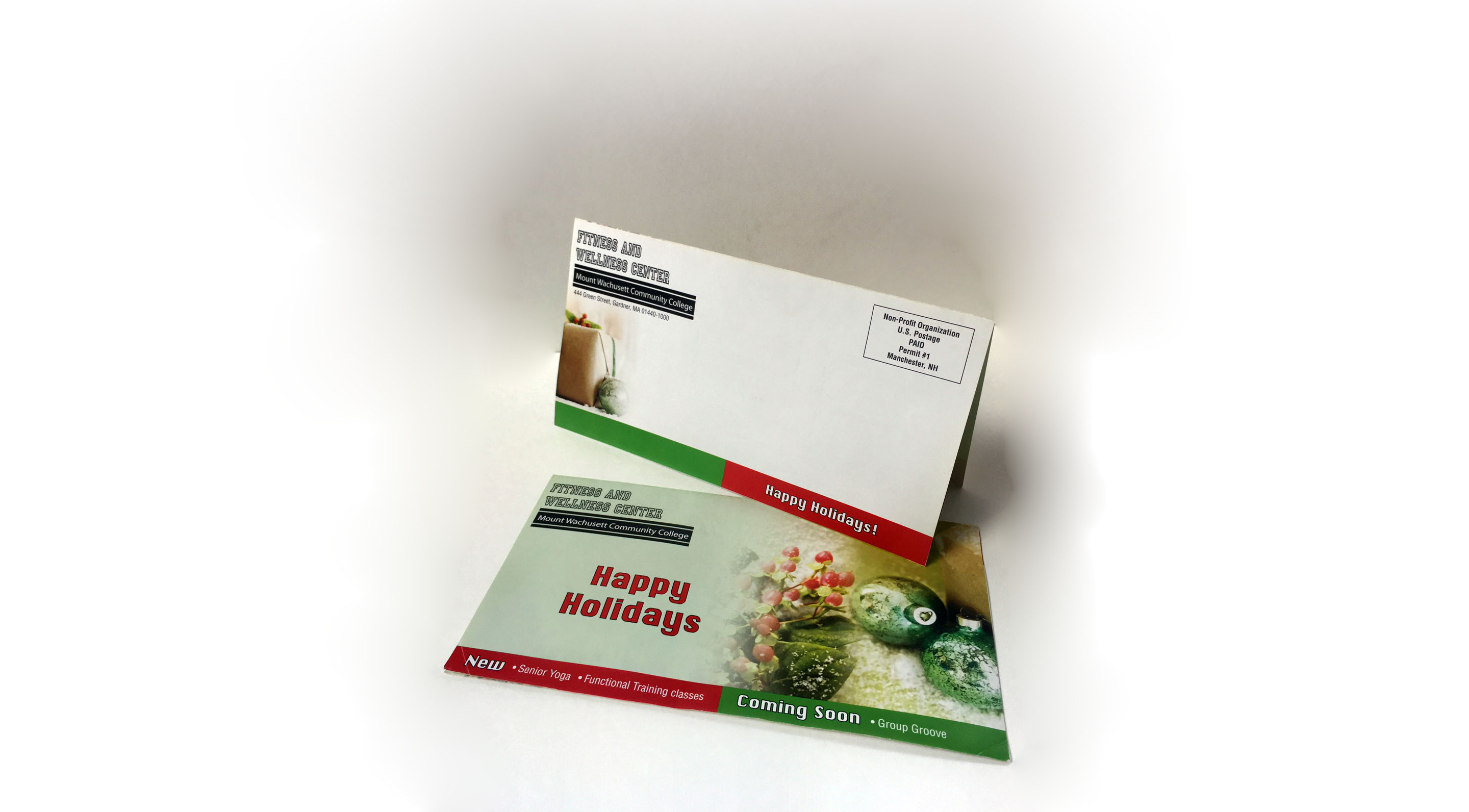 Self-mailer Trifold Brochure