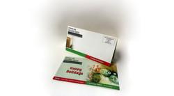 Self-mailer Trifold Brochure