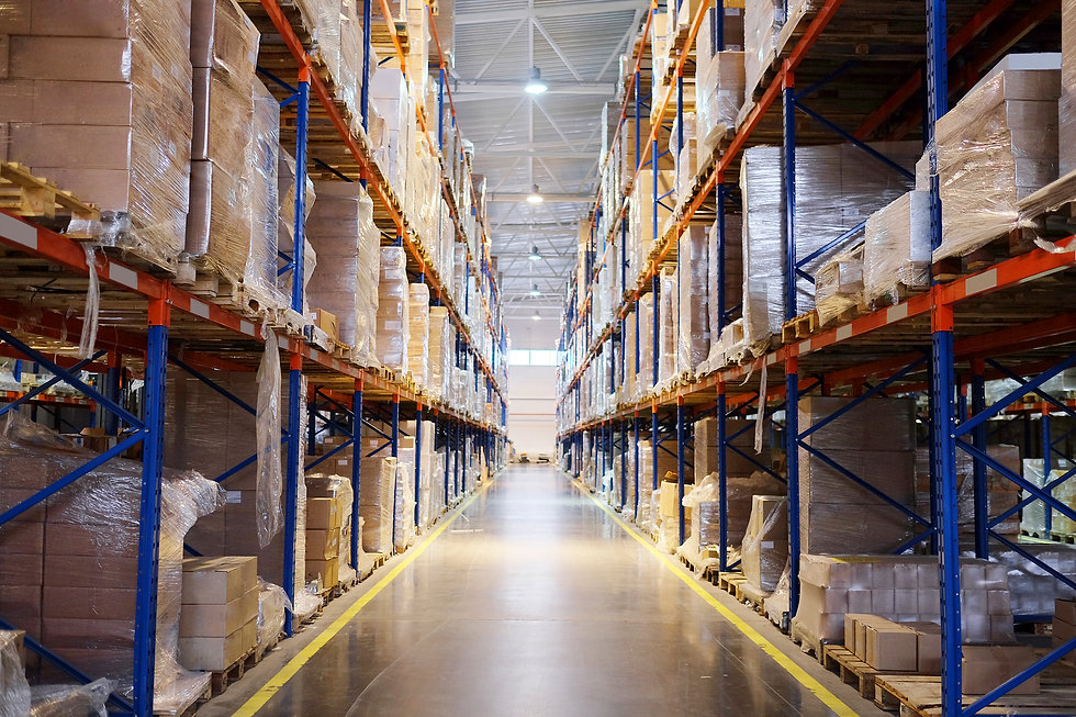 Pest-Control-in-a-Warehouse.jpg