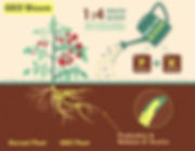 geo-bloom-product-infographic-by-ggta.jp