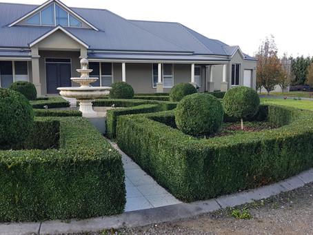 Garden Maintenance - Platinum