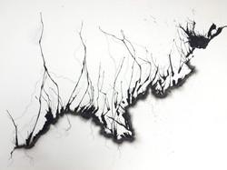 Rhizome 3