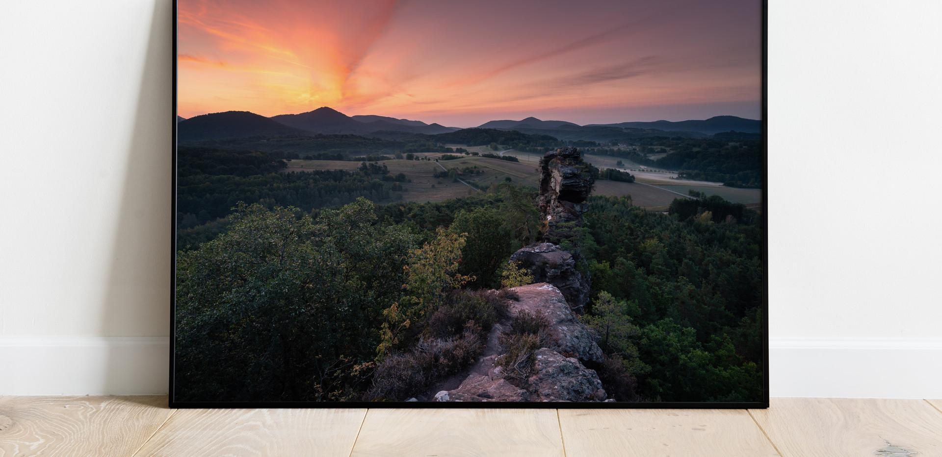 pfaelzerwald-sunrise-morgenrot.jpg