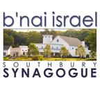 b'nai israel southbury logo