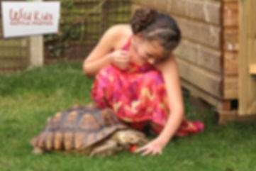 wild kids reptile parties reptiles snakes lizards tortoises venomous education exotic animals childrens parties tv work animals