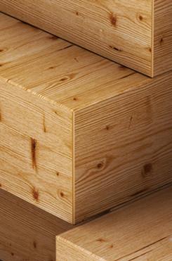 Trend wood