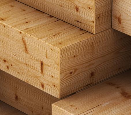 Arch Hoje: Arch Curiosidades- Extração da madeira para pisos e revestimentos