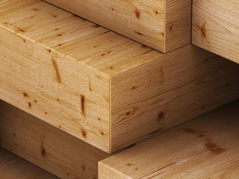 Das robuste Ahornholz