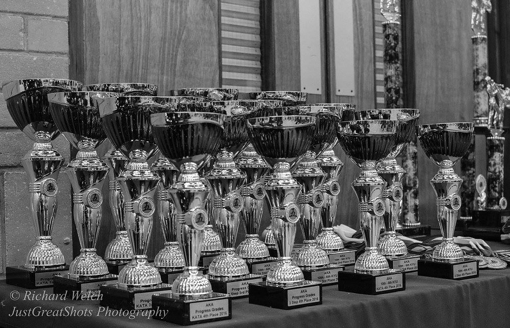 Trophies AKA Winter Competition 2016