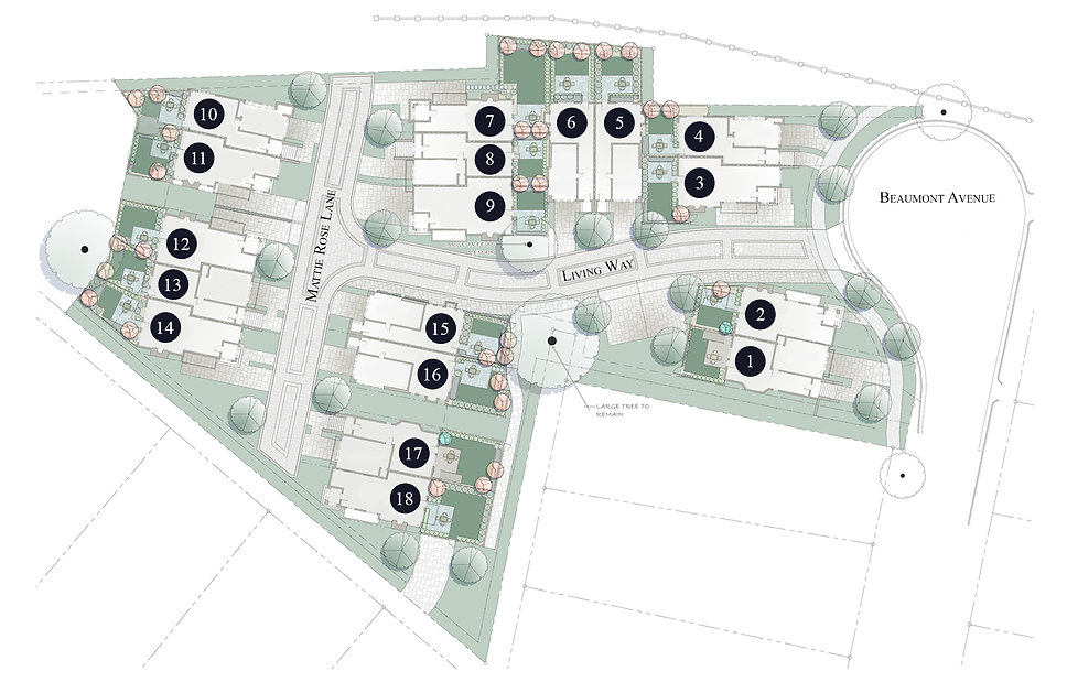Site Plan Revised by Jason copy.jpg