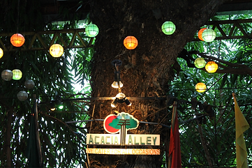 Acacia Tree at Acacia Alley Restaurant & Catering Services Pavilion Venue