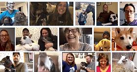 animal-farm-foundation-pets-together-792