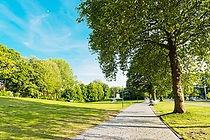 Vistiting Parks.jpg
