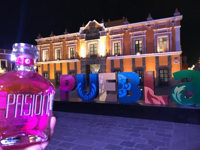 Miss Earth Puebla