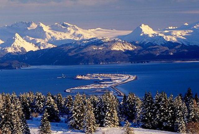 Best Views of Homer-01.jpg