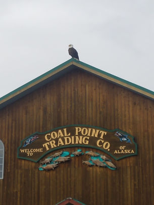 eagle on cpt.jpg