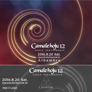 2016.8.20