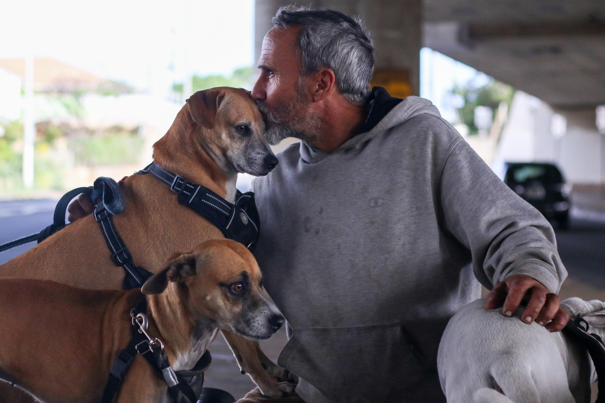 Francis Dornfried has been living on the streets with his seven dogs for the past seven years leading the fact that homeless crisis in Hawaii and including most other places in the United States remains challenging to solve.